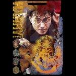 Imagenes Promocionales Harry Potter 7 part 2 (25)